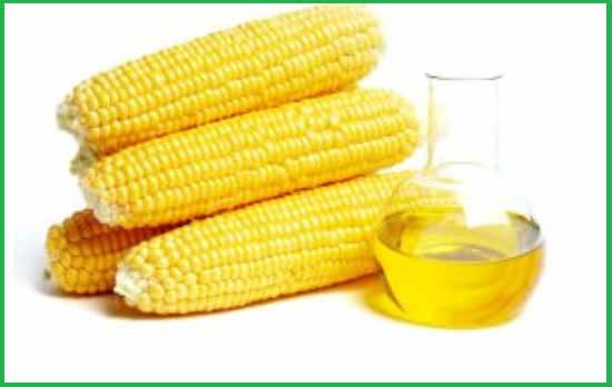 Польза и вред кукурузного масла