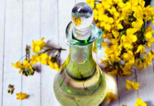 Ryzhikovoe maslo poleznye svojstva i protivopokazaniya2