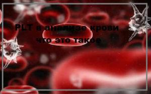 PLT в анализе крови что это такое