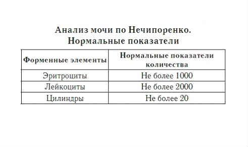 Analiz mochi po Nechiporenko kak sobirat'3
